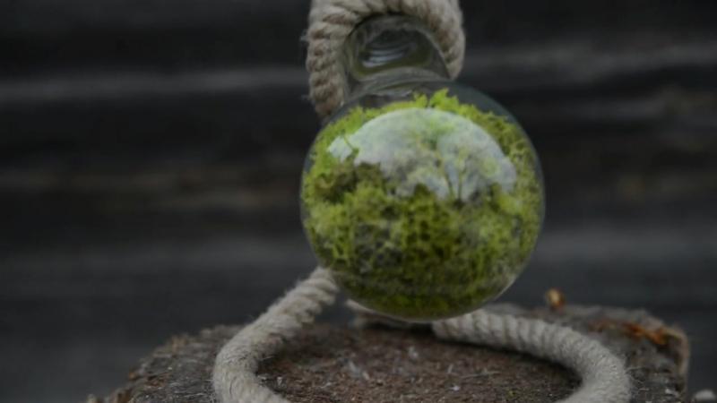 Флорариум в Лампочке 500 мл, коричневая - Новый тренд в мире подарков