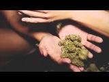 Ludacris - Party Girls (Jeftuz remix) (Music Video) ft. Wiz Khalifa &amp Jeremih  AcidBull