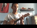 Snow hey oh Red Hot Chili Peppers ukulele cover