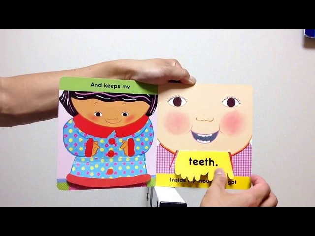 Toes, Ears, Nose! A Lift -the-Flap Book