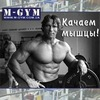 M-GYM: Качаем мышцы!