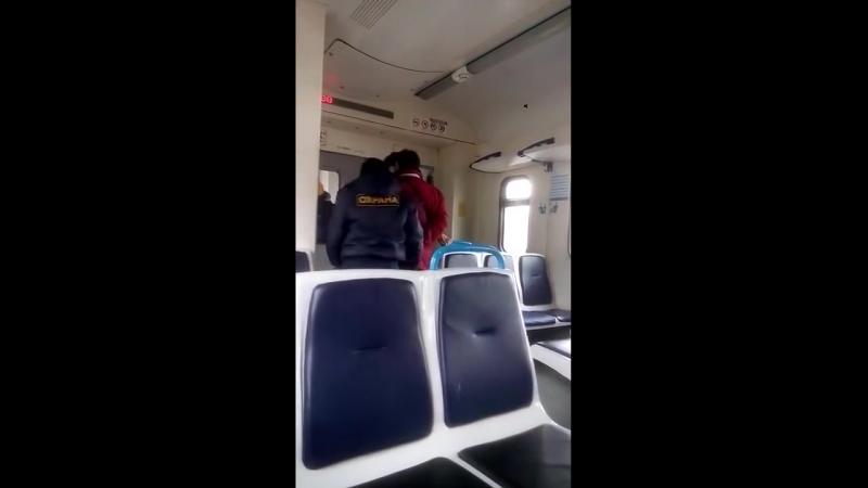 Как ведут себя контролеры когда не видят камер ⁄ fight in the train