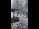 Tisza River Tisza folyó 2017