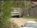 В Типсино медведь вышел к остановке где сельчане дожидались автобуса а на мичуринских дачах косолапый разрыл муравейник и ушёл