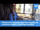 В Воронеже девушка-водитель маршрутки встретила любовь благодаря автобусу