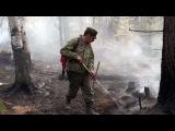 МЧС усиливает группировку вСибири, где горит тайга. Новости. Первый канал