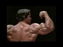 Arnold Is Numero Uno - Bodybuilding Motivation