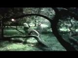 Ретро 50 е - Михаил Новохижин - Сероглазая (клип)