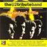 The u2 tribute band