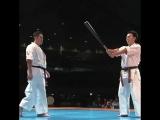 sukamoto Norichika demonstration (Genius Kyokushin)
