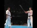 Sukamoto Norichika demonstration Genius Kyokushin