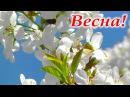 ВЕСНА 🌷 Природа просыпается, дарит первые весенние цветы и радость! Весна в природе HD