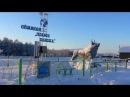 Оймякон — полюс холода, одно из самых суровых мест на земле, где постоянно живут и работают люди