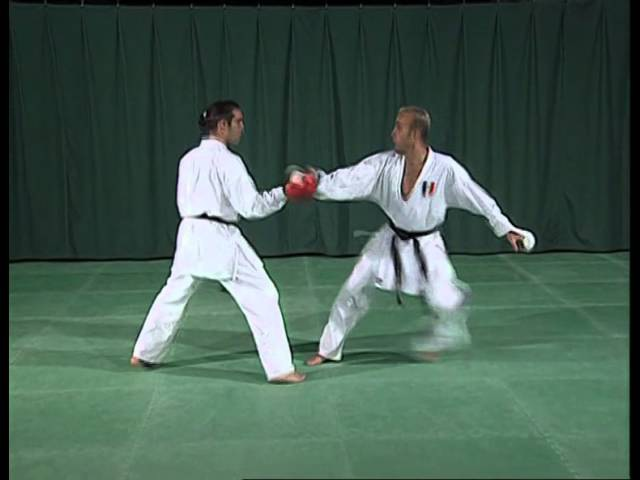 Video Karate - Technique Kumite Part 1 by Alexandre Biamonti