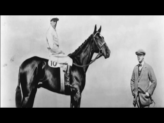 Тёмная лошадка (2015, Dark Horse)