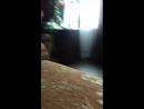 голая Алена танцует стрептиз