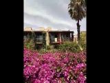 Отель в Турции PALOMA OCEANA