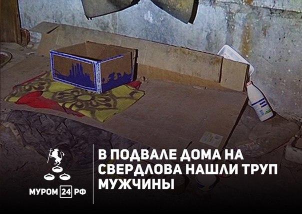 В подвале дома № 28 по улице Свердлова был обнаружен труп неизвестного