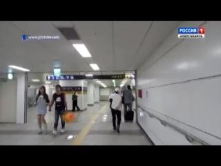 Работа в Южной Корее/Work in Korea