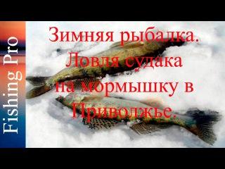 Куртки женские зимние кожаные с мехом купить в минске