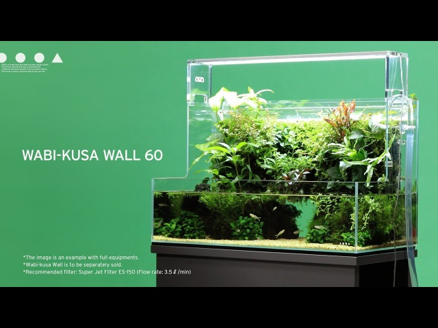[ADAview] DOOA Wabi-kusa Wall 60 Making layout
