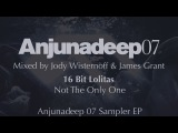 16 Bit Lolitas - Not The Only One - Anjunadeep 07 Sampler