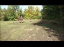 02.10.2016 год. Вытаптывание лошадьми Ботанического сада ЮФУ.