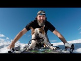Bentley the Bulldogs Helicopter Adventure | Shot in 4k