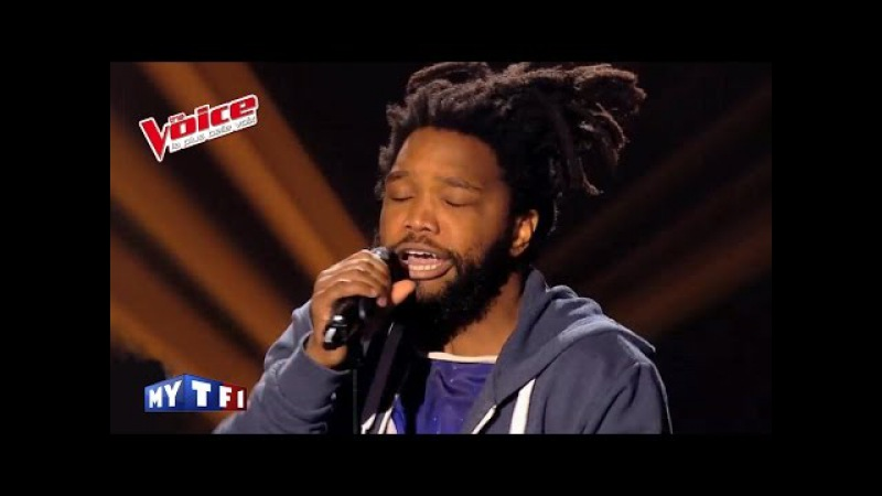 The Voice 2014│Spleen - Toxic (Britney Spears)│Blind audition