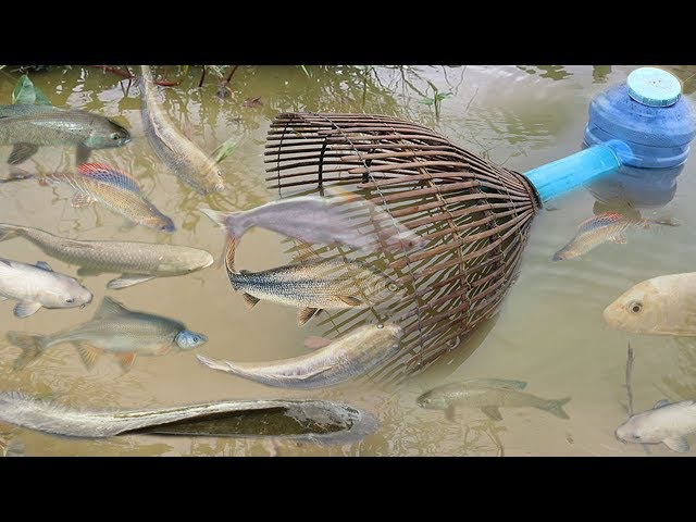 Creative Girl Make Fish Trap Using PVC - Fan Guard - Bamboo To Catch A Lot of Fish