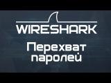 Kali Linux 1.1 Перехват паролей (Wireshark) в Wi Fi сетях