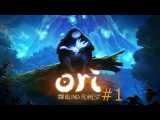 Skill Tv Прохождение Ori and the Blind Forest 1