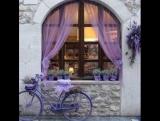 Поля лаванды. Фиолетовые оттенки в саду