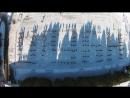 22PushUpChallenge NUBiP