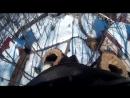 Спил опасного дерева с дуплом. ОПАСНЫЕ ДЕРЕВЬЯ. Арбористика SamArbo 1
