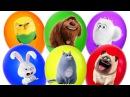 Тайная Жизнь Домашних Животных мультики 2016 Видео для детей Сюрпризы Игрушки Ball