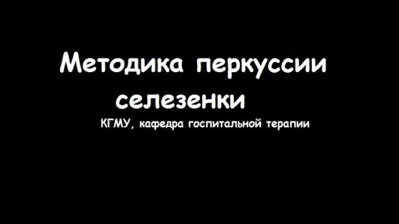 Методика перкуссии селезенки - meduniver.com