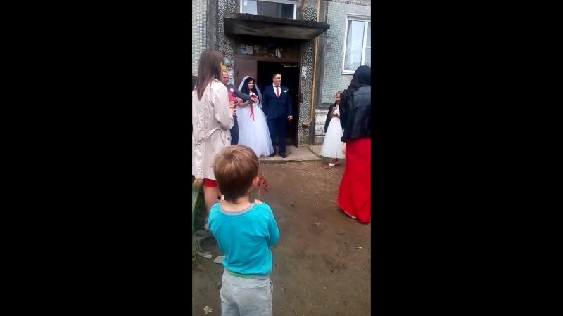 свадьба моего соседа