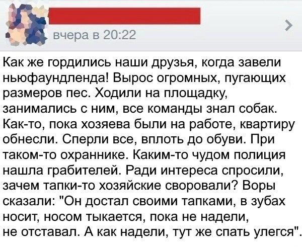 Фото №456248467 со страницы Софьи Никишовой