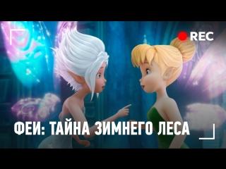 Прямая трансляция: Феи: Тайна зимнего леса (2012) BDRip 1080p | Лицензия