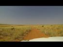 The Kgalagadi (KTP) - A Kalahari Self-Drive Safari Adventure