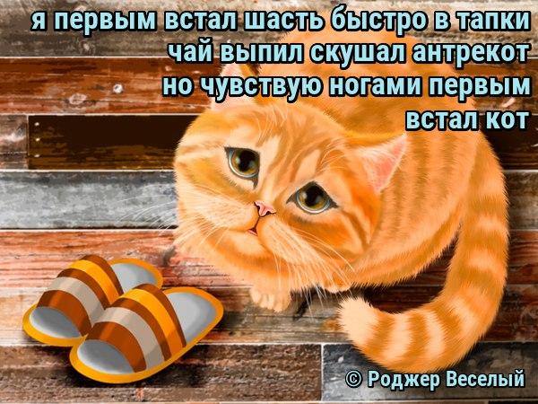 https://pp.userapi.com/c637830/v637830788/49599/xYnKHyKrIVE.jpg