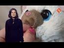 Интерактивный котенок Ками в магазине игрушек Toy