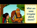 Unit 22- Plural Nouns Week 2