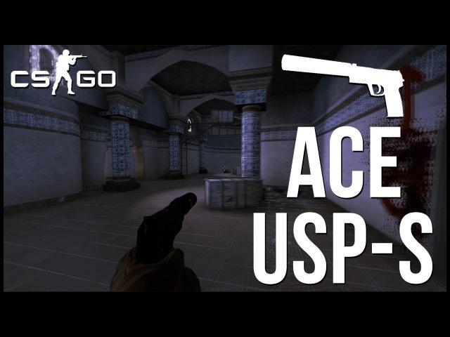 CS:GO ACE C USP-S:D