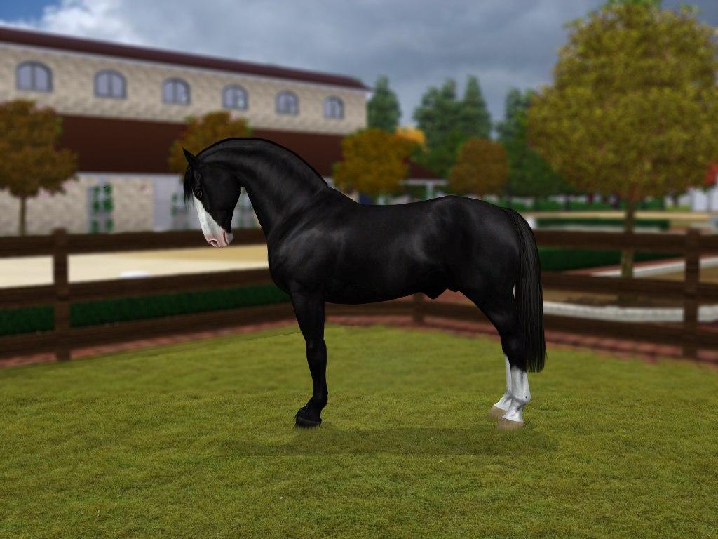 Регистрация лошадей в RHF 2 - Страница 3 BjATaJUOkFw