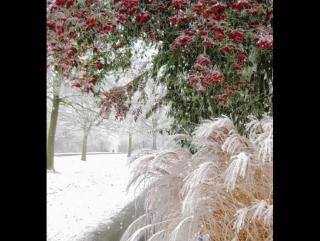 1Снег Кружится А снег не знал и падал, А снег не знал и падал Зима была прекрасна прекрасна и чиста