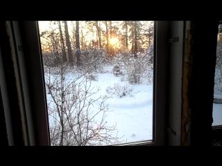 вид из моей комнаты на даче в Комарово на солнечный зимний день