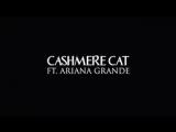 Cashmere Cat ft. Ariana Grande - Quit (Full audio snippet). Паблик: sunshine ariana.