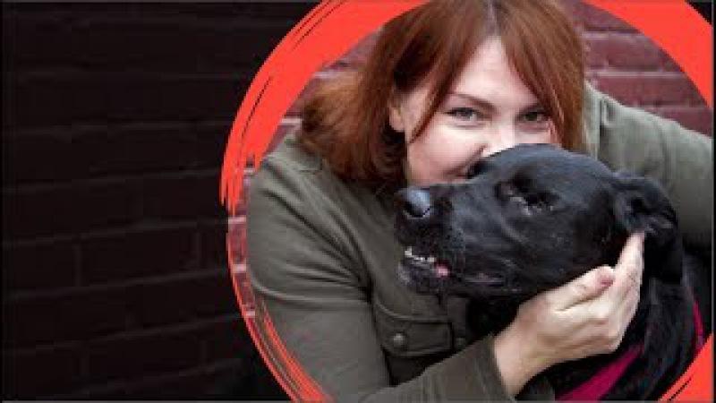 Взаимное спасение: Трейси и ее собака Джек. Удивительная история исцеления. Русс...